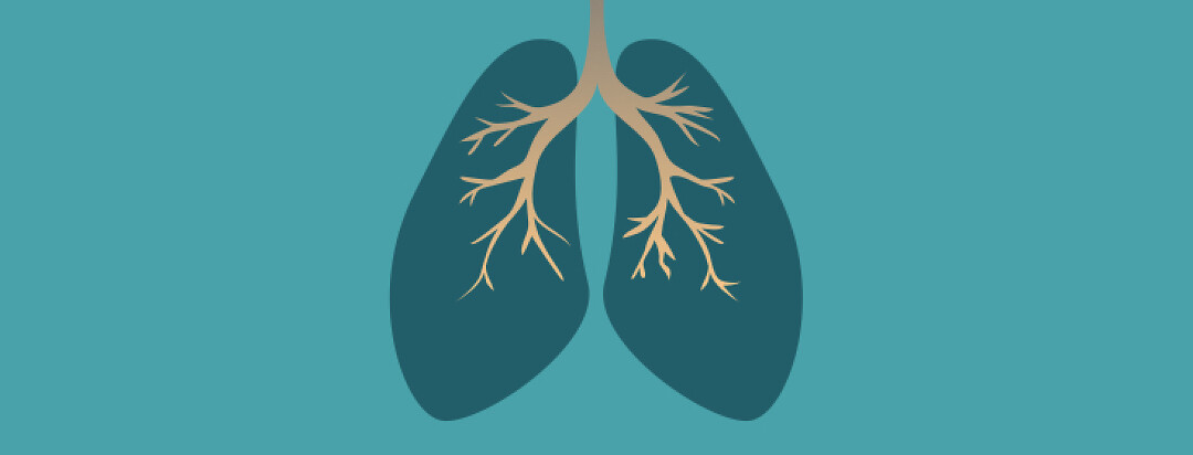 Pair of lungs on blue background