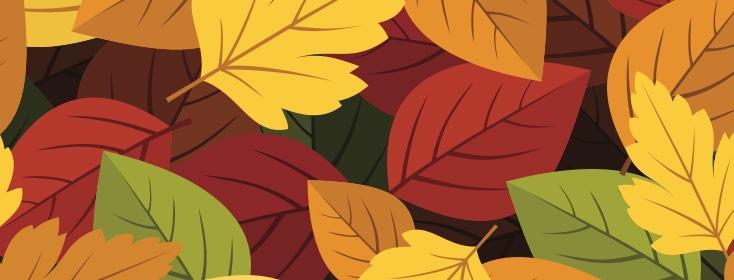 Fall: My Favorite Asthma Season!