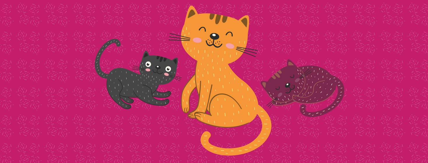 three cute cats with dander