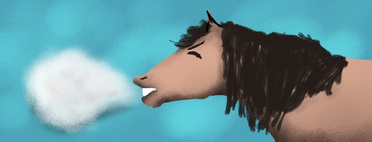 Horses and Asthma.