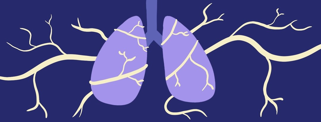 Links Between Nerves And Asthma
