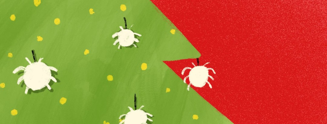 3 Hidden Christmas Asthma Triggers