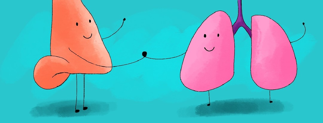 nose and lungs holding hands