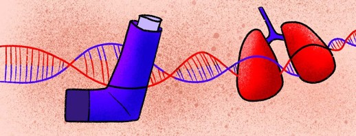 Is Asthma Genetic? The Role of Genetics in Increasing Risks for Diagnosis image