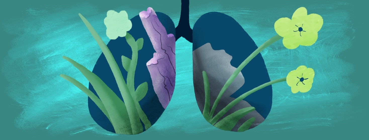 rocks and plants growing out of lungs