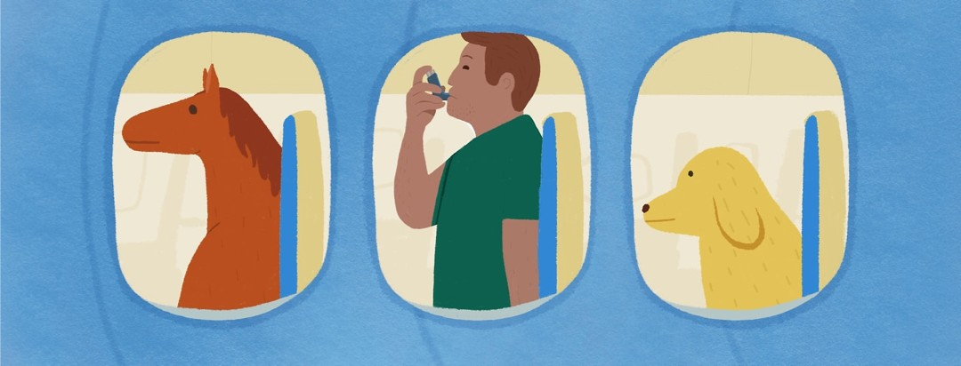 a man taking his inhaler on a plane with a mini horse and a dog
