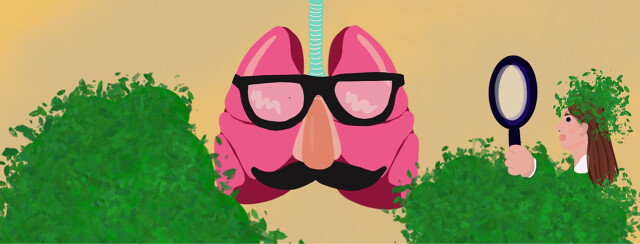 Lungs disguised into being Asthmatic but actually alpha-1, doctor investigating with magnifying glass