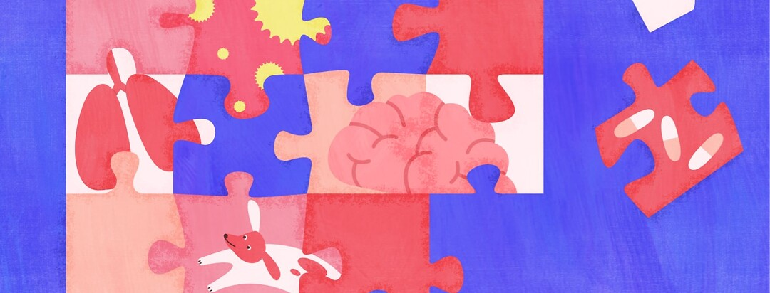 puzzle pieces being put together, one has a brain, one has lungs, and some have allergens