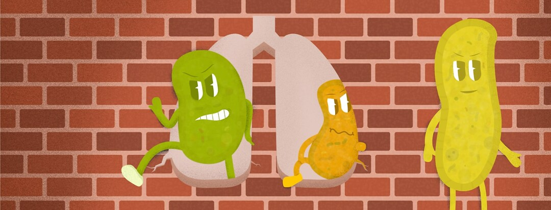 germs breaking through a hole in a wall shaped like lungs